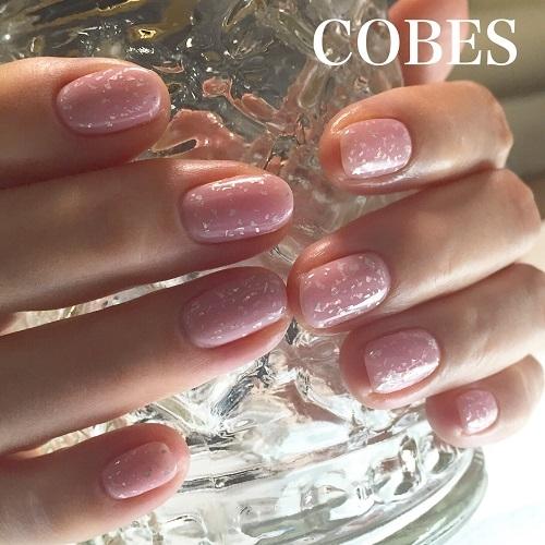 cobes1601219