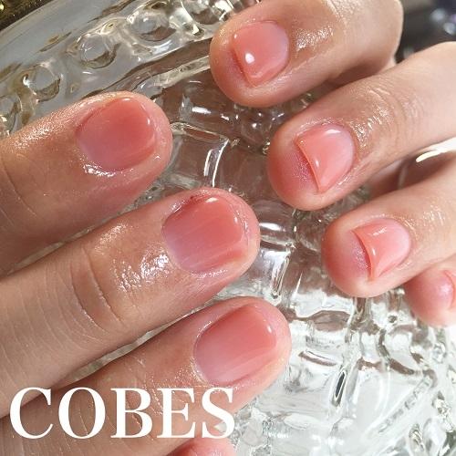 cobes1602021