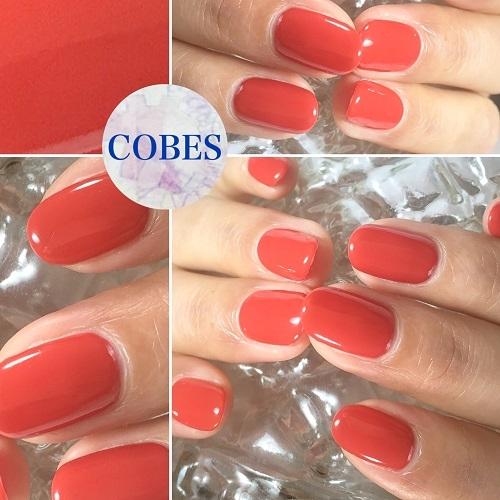 cobes170111