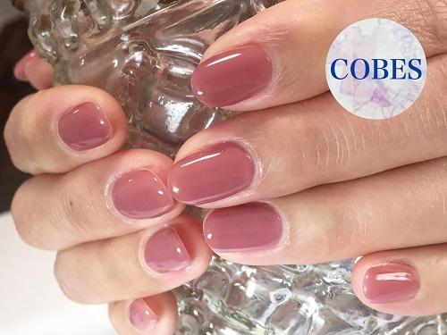 cobes1702213