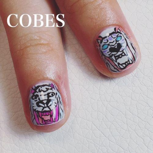 cobes1509052
