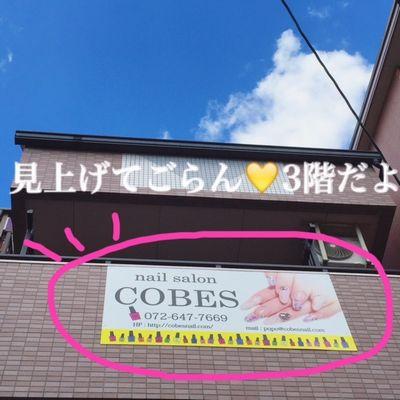 cobesmap28