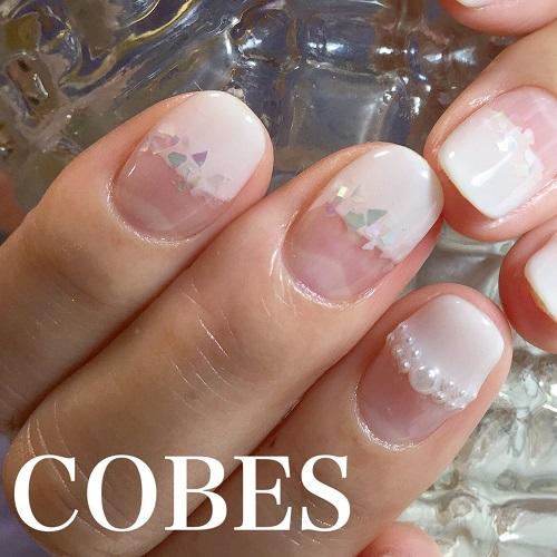 cobes16040710