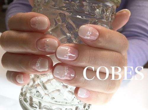 cobes16040711