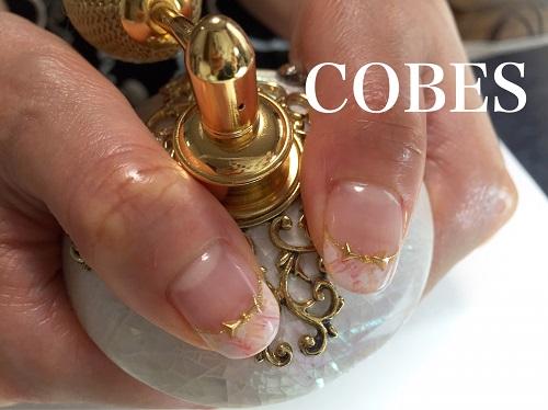 cobes1604073