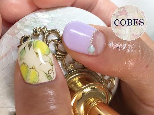 cobes1607073